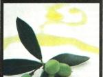 Uleiurile vegetale – Tratamente Naturiste