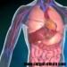 Cancerul de ficat