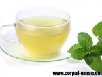 Ceaiul verde si efectele sale benefice