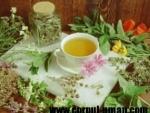 Greseli in folosirea plantelor medicinale