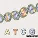 Genetica (video)