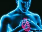 Ce fel de supliment luat de barbati creste pericolul de a face infarct?