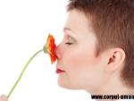 Cum te poate ajuta terapia prin mirosuri in cazul unui accident cerebral?