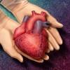 Inima construita din celulele pacientului