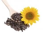 Cat de importante sunt semintele de floarea soarelui in cadrul unei diete?