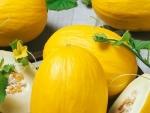 Dieta de slabit cu pepene galben