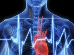 Stop cardiac – tehnica respiratiei gura la gura este inutila