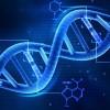 Care este legatura dintre ADN si caracterul tau?