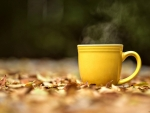 De ce este bine sa bei lichide calde toamna?