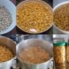 Semintele lupinului – sursa buna de proteine