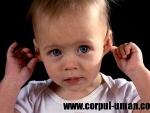 Tipurile de sange si infectiile urechii