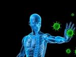 Cum poti evita slabirea cronica a sistemului imunitar