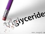 Ce sunt si cum actioneaza trigliceridele?