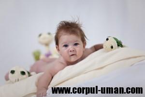 Bebe 3 luni