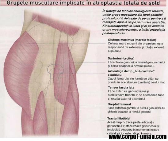 Ce medicamente sunt necesare pentru tratarea artritei reumatoide