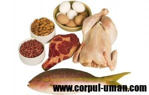 Proteinele- Dieta Dukan