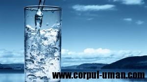 Cantitatea de apa pe zi