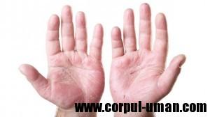 Produse naturale pentru piele iritata