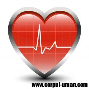 Tratament hipertensiune arteriala