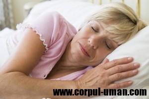 Somnul si imbatranirea creierului
