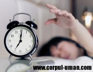 Cat trebuie sa dormi?