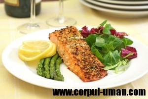 Dieta low-carb sau dieta lowcarb