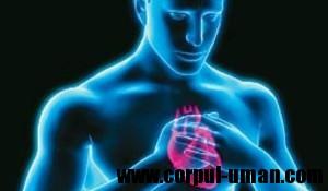 Simptome infarct miocardic