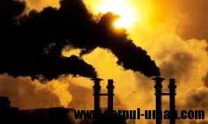 Afectiuni datorita poluarii