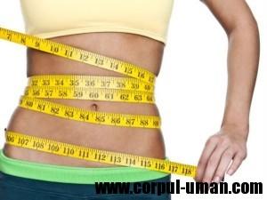 Dieta care te scapa de burta
