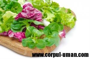 Dieta de slabire cu salata verde