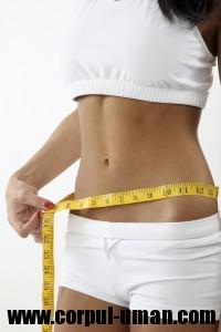 Dieta Jenny Craig