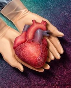 Inima din celulele pacientului