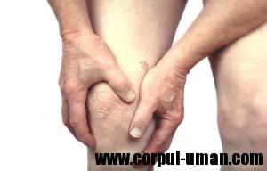 Simptomele artritei