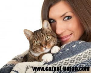 Tuberculoza de la pisici