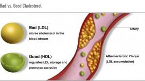 Cresterea colesterolului HDL