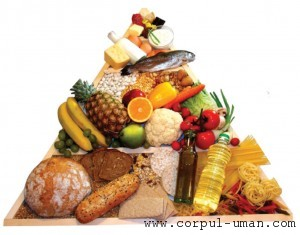 Retete dieta mediteraneeana