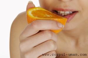 Vitamina C in dieta