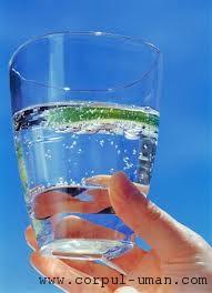 Consumul de apa la masa
