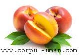 Beneficii nectarine