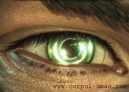 Retina artificiala