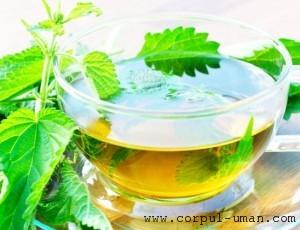 Slabire cu ceai de urzica