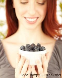 Dieta cu afine