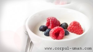 Dieta cu fructe si iaurt
