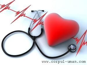 Afectiuni cardio-vasculare preventie