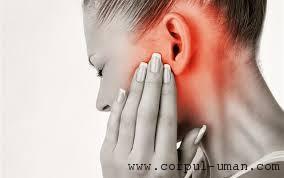 Infectie ureche tratament