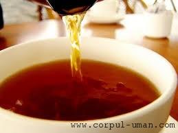 Ceai de lumanarica
