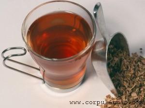 Ceai de mesteacan