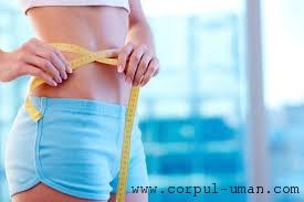 Mentinerea greutatii dupa dieta