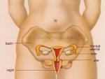 Scurgeri Vaginale ( Fluor vaginalis )