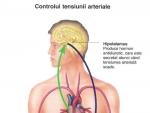Cauzele Hipertensiunii şi Hipotensiunii Arteriale